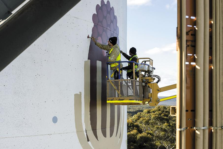 Wildflowers add a splash of colour on CBH grain silos
